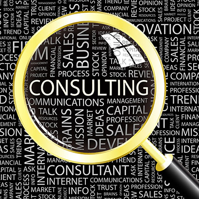 Pearland Web Consultant
